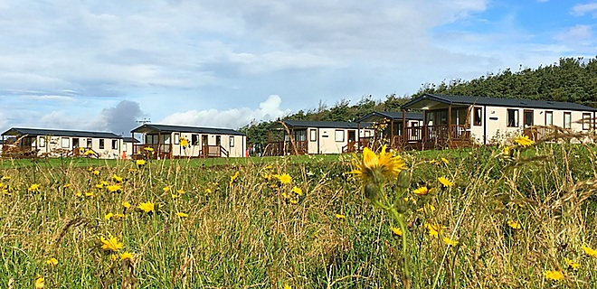 Castaway (forest) holiday homes