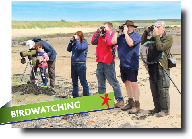 Birdwatching in Fife - Abbeyford Active