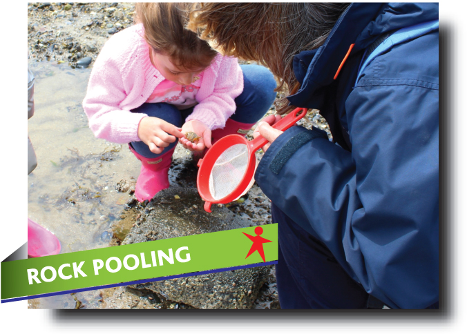 Rock pools in Fife - Abbeyford Active